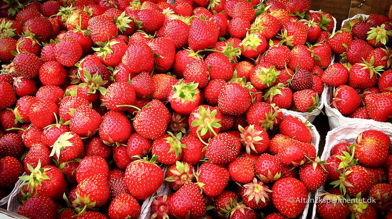 Jordbærfrø fra friske jordbær